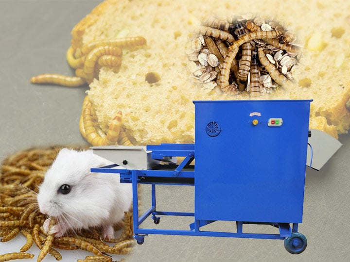 commercial mealworm sifting machine