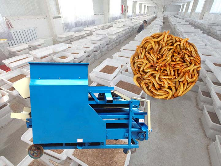 mealworm separating machine manufacturer