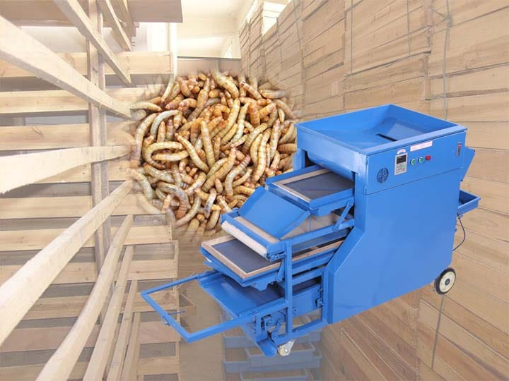 mealworm separating machines manufacturer