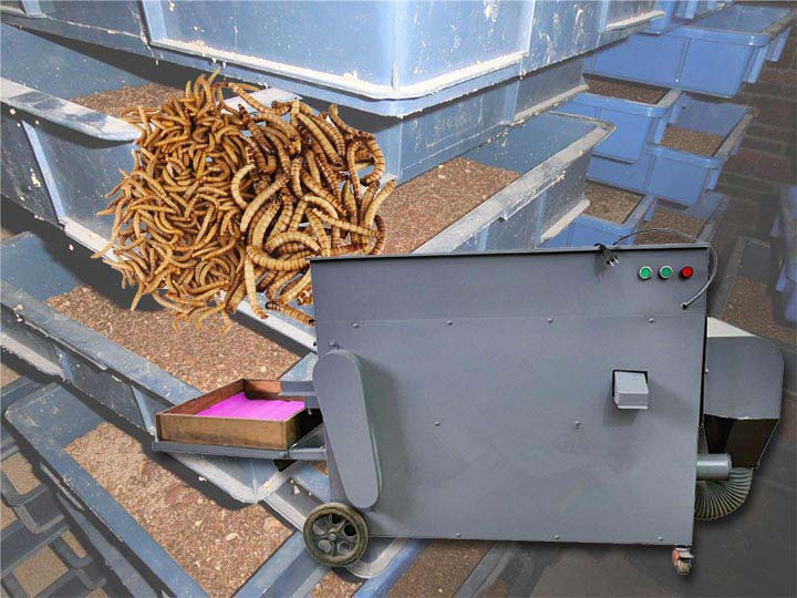 mealworm(barley worm) sorting machine