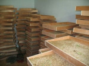 small mealworm breeding plant of the Korean customer