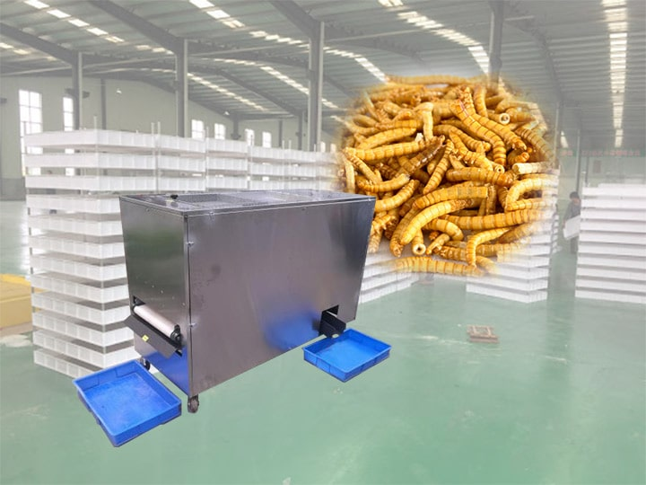 new mealworm sifter machine for sale
