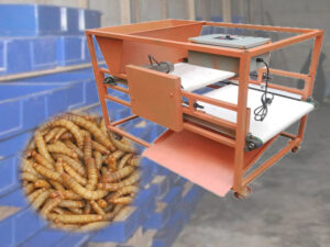 live & dead mealworm sorting machine